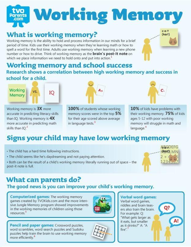Working memory graphic